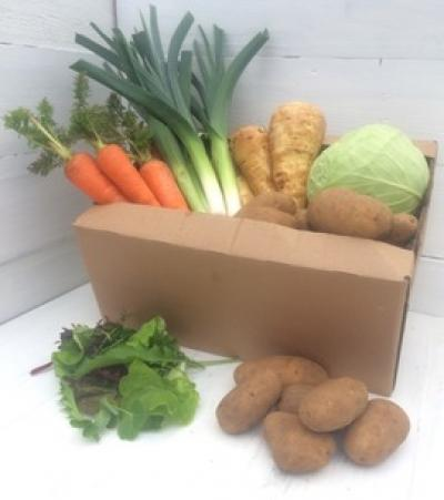 Picture of Organic Veg Box - Medium